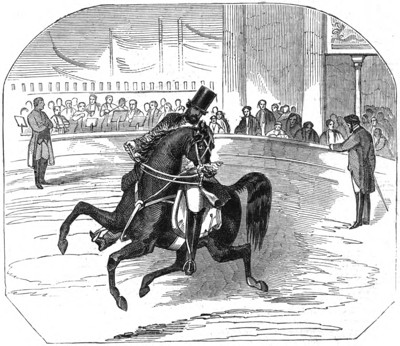 Pablo Fanque and his Steed, Astley's 1847